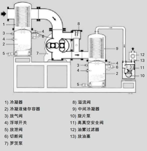 用于蒸汽冷凝的罗茨泵组