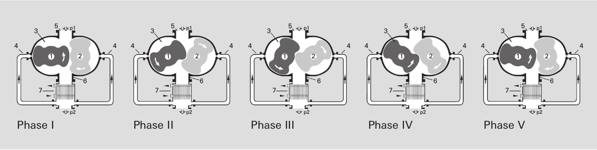 Operating principle of a gas-cooled Roots pump