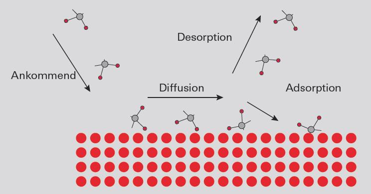 Gas-Festkörper-Interaktion auf einer Oberfläche